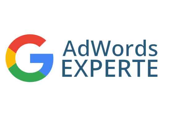 Google-AdWords-Experte-Zertifikat-online-marketing-stuttgart-meinonlinemarketing-website-hosting-seo-social-media-sea-ads-seminare-workshops